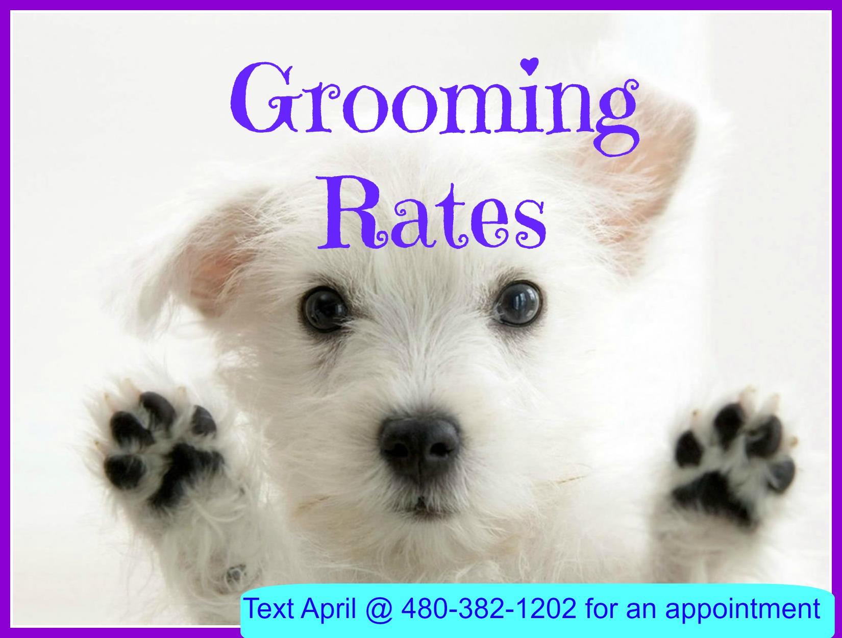 phoenix grooming rates